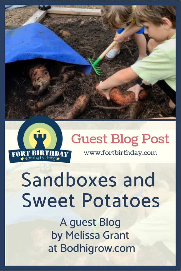 Pinterest Pin Sweet Potatoes and Sandboxes and fortbirthday guest post